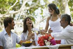 South American couples toasting with wine Stock Photos