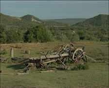 1820 settler ox wagon and a giraffe in the distance Stock Footage