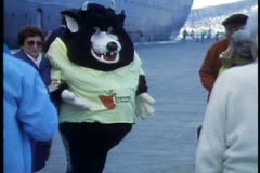 Tasmanian Devil mascot, posing for photos with QE2 passengers, Hobart, Australia Stock Footage