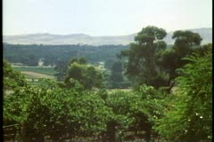 Barossa Valley,  Australia, wine district  Australia, wide shot, trees, Stock Footage