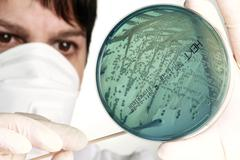 Stock Photo of Microbiology research