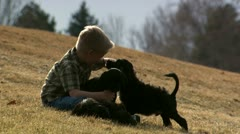 Boy playing with puppies outdoors - stock footage