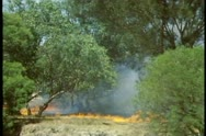 Stock Video Footage of Brush fire of the outback, wide shot, Western Australia