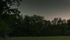 Fireflies and startrails Stock Footage