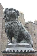 Greyfriars Bobby, Edinburgh - stock photo