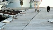 Man and dog walk on dock Stock Footage