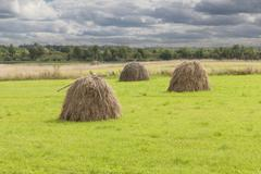 A pile of hay in the meadow before the storm Stock Photos