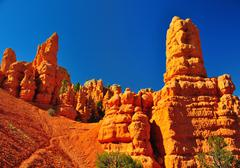 rock formations in red canyon park in utah. - stock photo