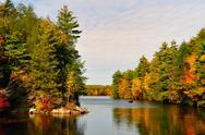 Fall folliage at bigelow hollow state park, ct Stock Photos