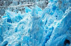 Deep blue glacier ice with a bald eagle. - stock photo