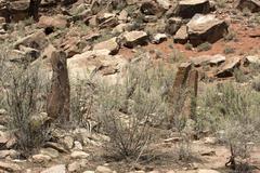 Anasazi Indian village stone protection wall 1617.jpg - stock photo