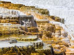 Mammoth Hot Spring Terraces, Yellowstone National Park Stock Photos