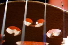 violin strings - stock photo
