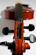 violin signature stamp - stock photo