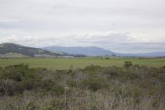 valley in an overcast day - stock photo