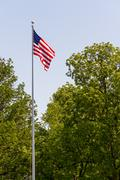 US Flag on Pole with Trees - stock photo