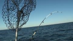 Landing net Stock Footage
