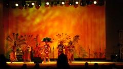 Prehispanic Dance Performance Stock Footage