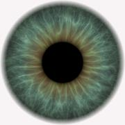 Big grey iris in eyeball - stock illustration