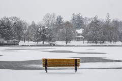 Park Bench in Winter Stock Photos