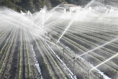 Stock Photo of Irrigation in a Field