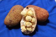 Cempedak Fruits Stock Photos