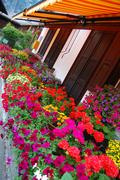 Alpine Flowerbox - stock photo
