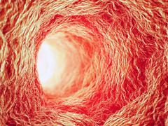 Inside a blood vessel Stock Illustration
