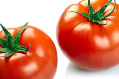 two tomatoes isolated on white background - stock photo