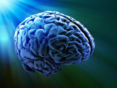 Human brain abstract Stock Illustration