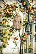 Autumn bird box Stock Photos