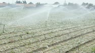 Watering farming fields Stock Footage