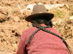 Farmer woman in the andes of Peru  Stock Photos