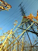 stream mast - stock photo