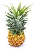 Ripe pineapple Stock Photos