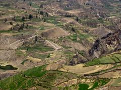 colca canyon, peru - stock photo