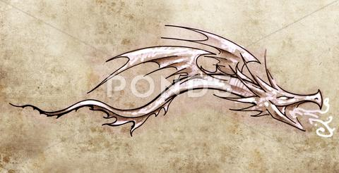 Stock Illustration of sketch of tattoo art, stylish decorative dragon