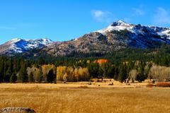 Fall season in the sierras Stock Photos