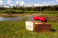 Meadow picnic Stock Photos