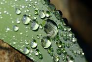 Stock Photo of water drop macro