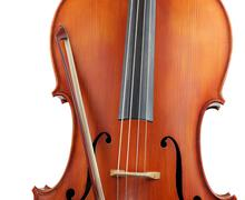 Crop of cello and bow, isolated - stock photo