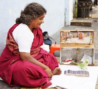 Indian fortune teller Stock Photos