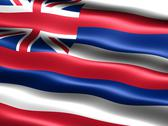 Flag of the state of hawaii Stock Illustration