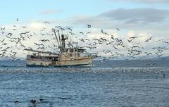 Old fishing trawler in alaska Stock Photos