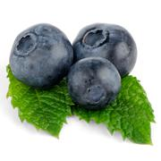 Ripe blueberry Stock Photos