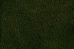 Dark green leather Stock Photos