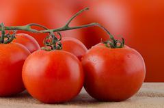 cherry tomatoes vine - stock photo
