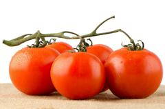 Cherry tomatoes vine Stock Photos