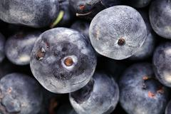 Stock Photo of closeup of blueberries fruit showing imperfections on skin