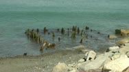 Stock Video Footage of Pier remnant shoreline